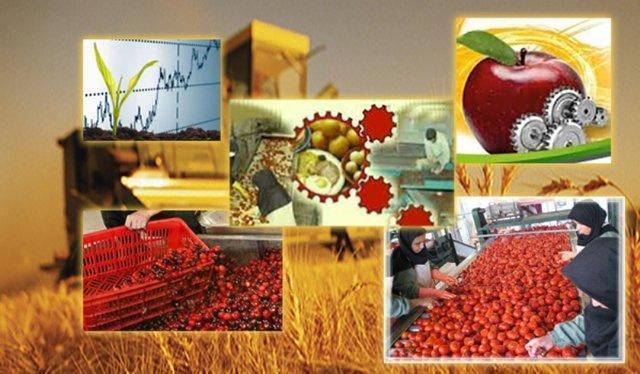 تراز غذا و کشاورزی مثبت تر از پارسال