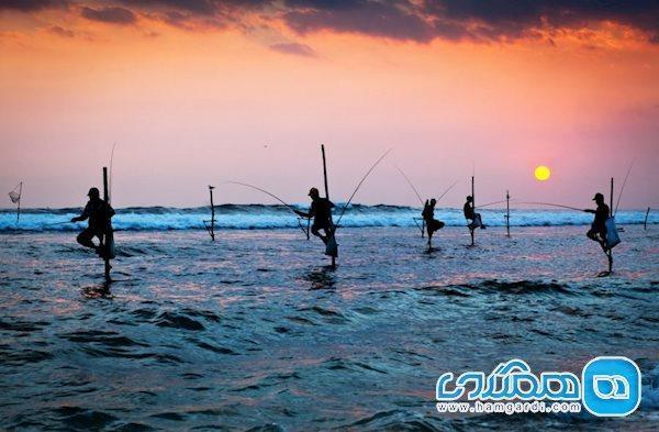 آشنایی کوتاه با معروف ترین جاذبه های دیدنی سریلانکا